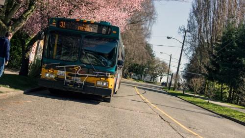 Metro Route 31