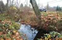 Walker Creek, Along Bus Route 132