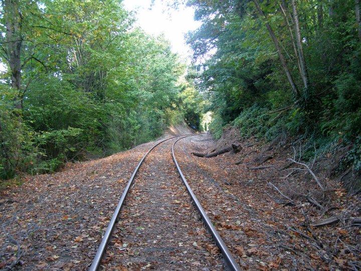 Eastside Rail Corridor  (Photo by the Author)
