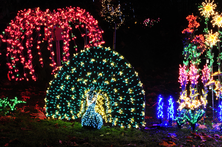 Holiday service reductions start monday for Holiday lights botanical gardens